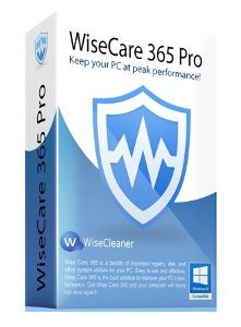 wise-care-365-pro-2501253